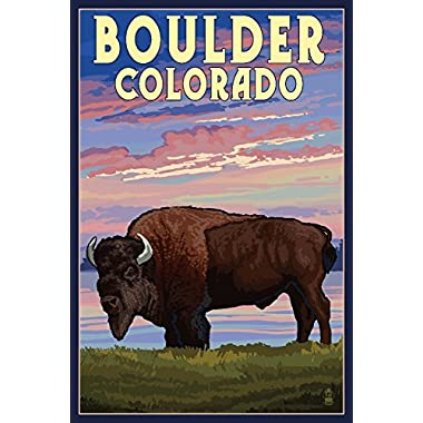 Boulder, Colorado - Bison and Sunset (9x12 Collectible Art Print, Wall Decor Travel Poster)