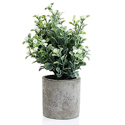 Decorative Small Artificial Potted Grass Pea Flower Plants with Round Textured Vase