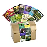 Günstige Teebox mit 11 Teesorten Probierset