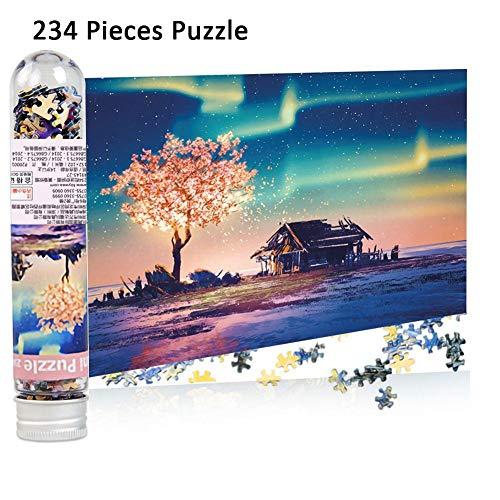 BonTime 234 Mini Reagenzglas Puzzle Polar Landschaft Landschaft Dämmerung Schloss Geiger Lernspielzeug Puzzle Desktop-Dekoration für Erwachsene und Kinder