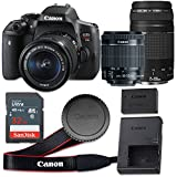 Canon EOS Rebel T6i 24.2 MP CMOS Digital SLR Camera with 3.0-Inch LCD with EF-S 18-55mm f/3.5-5.6 IS STM Lens and EF 75-300mm f/4-5.6 III Lens - Wi-Fi Enabled (Renewed)