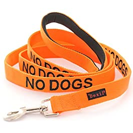 NO DOGS (Not good with other dogs) Orange Colour Coded 60cm 1.2m 1.8m Luxury Neoprene Padded Handle Dog Leads PREVENTS Accidents By Warning Others Of Your Dog In Advance