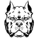 Oedim Pack 5 Pegatinas Troqueladas Coche Ilustración Cara Perro American Bully 16 x 16 cm | Adhesivo de Fácil Colocación | Pegatina para Coche Económica y Resistente