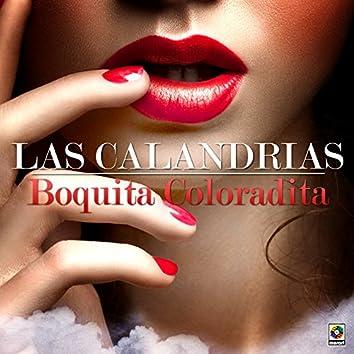 Boquita Coloradita