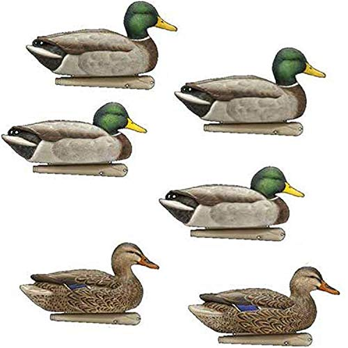 AvianX Top Flight Duck Open Water Mallard Decoy (6 Pack), Green (1-Unit)