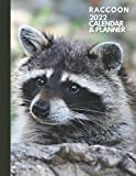Raccoon: 2022 Calendar & Planner. Daily And Weekly Agenda Organizer. Personalized Planner. Animal Lover Gifts