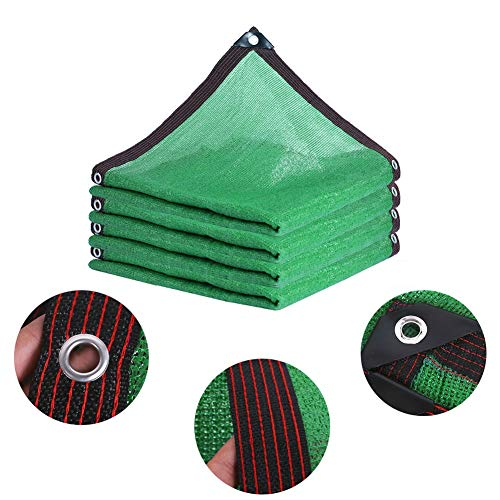 LIANGLIANG Malla Sombra De Red Aplicar para Ventana Suculentas Flores Protector Solar Anti-UV Hidratante, Verde, Personalizable (Color : Green, Size : 6x10m)