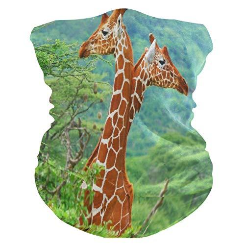 Afrikanische Wilde Giraffe Gesichtsmaske Schlauchtuch Kopftuch Stirnband Bandanas Kopfbedeckung Halstuch Gesichtsschal Für Männer Frauen Den Sport