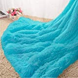 Homore Soft Fluffy Blanket Fuzzy Sherpa Plush Cozy Faux Fur Throw Blankets for Bed Couch Sofa Chair Decorative, 50''x60'' Teal Blue