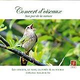 Concert d' oiseaux - Son pur de la nature (Concert of Birds - Pure nature sounds)