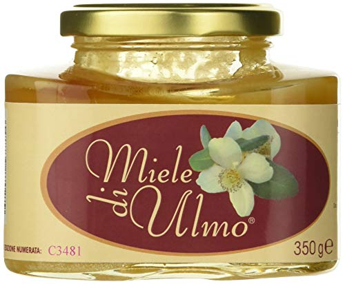 Rg Pharma Miele di Ulmo, 350 grammi