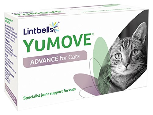 Yumove Cat Triple Action Joint Supplement 60 Capsules