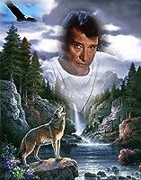 ウルフイーグルダイヤモンド刺繡5ddiy「ジョニーハリーデイ」ラインストーンクロスステッチのダイヤモンド絵画モザイクパズル画像