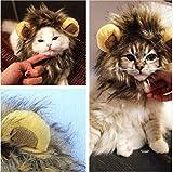Haustier Kostüm Löwe Cosplay für Hunde Katze Halloween Karneval mit Ohren