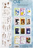 Zoom IMG-1 anatomia per artisti