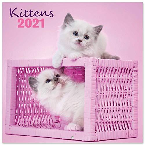 ERIK - Calendario de pared 2021 Chantrenne Cat, 30x30 cm