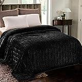 Whale Flotilla Flannel Fleece Queen Size(90x90 Inch) Lightweight Bed Blanket, Soft Velvet Bedspread Plush Fluffy Coverlet Palm Leaves Design Decorative Blanket for All Seasons, Black