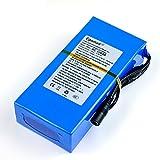 3000mA-20000mA DC 12V Super Rechargeable au Lithium-ION Batterie Pack enfichable pour caméras de vidéosurveillance DVR GPS Mini Haut-Parleur de Produits numériques et de Jouets (20000mA)