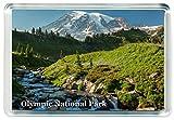 J452 Olympic National Park Jumbo Refrigerator Magnet US - American Travel Fridge Magnet USA