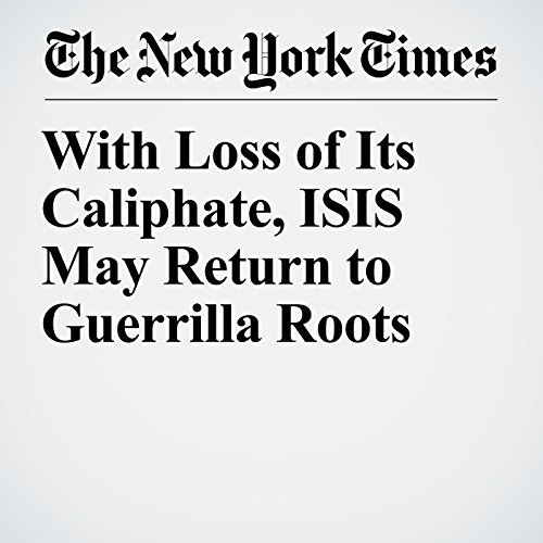 With Loss of Its Caliphate, ISIS May Return to Guerrilla Roots audiobook cover art