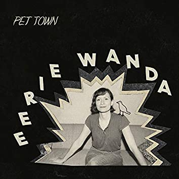 Pet Town