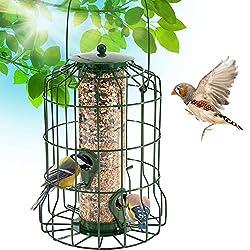 Cage-style bird feeder