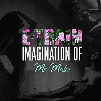 Imagination of Mr. Malo