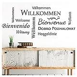 Grandora Wandtattoo Willkommen I Taupe (BXH) 132 x 58 cm I Sprachen international Flur Diele Wohnzimmer Sticker Aufkleber Wandaufkleber Wandsticker W5092