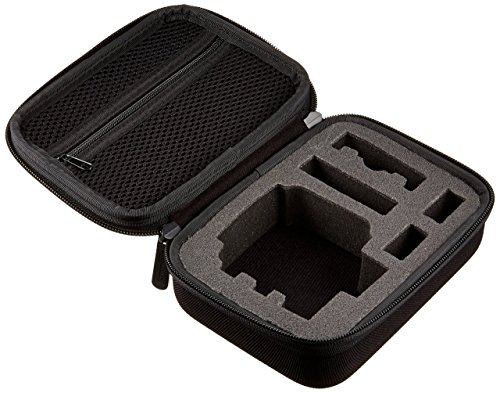 GoPro Max Rechargeable Battery (Official Accessory), Black & Amazon Basics Carrying Case for GoPro - Extra-Small