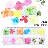 1ボックス ドライフラワー ネイルデコ フラワー 天然の押し花 12色 ジェルネイル用 デコ 素材 ネイルパーツ (9)