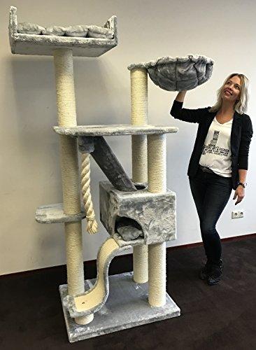 RHRQuality kratzbaum Grosse Katzen stabil XXL Kilimandjaro de Luxe Hell grau katzenkratzbaum für Maine Coon große katzenbaum schwere Katze kletterbaum kratzmöbel Dicker stamm