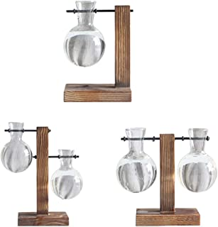 Fenteer 3 Pieces Desktop Glass Planter Bulb Vase with Retro Wooden Stand, for Hydroponics Plants Decor