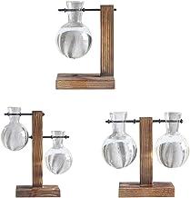 Fenteer 3 Pieces Desktop Glass Planter Bulb Vase with Retro Wooden Stand, for Hydroponics Plants Decor