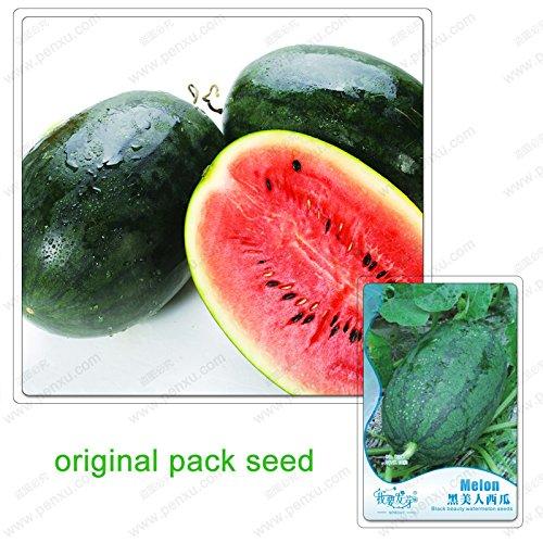 10 graines/Pack, à haut rendement pastèque super doux, les Américains noirs pastèque grosses graines, fruits biologiques non-OGM