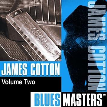 Blues Masters Vol. 2
