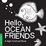 Hello, Ocean Friends: A High-Contrast Book - Violet Lemay