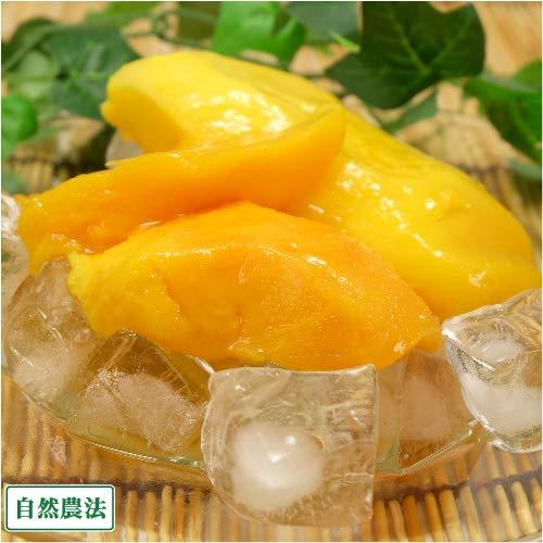 冷凍マンゴー(アーウィン) 2kg 自然農法 (沖縄県 沖縄マンゴー生産研究会) アップルマンゴー ふるさと21
