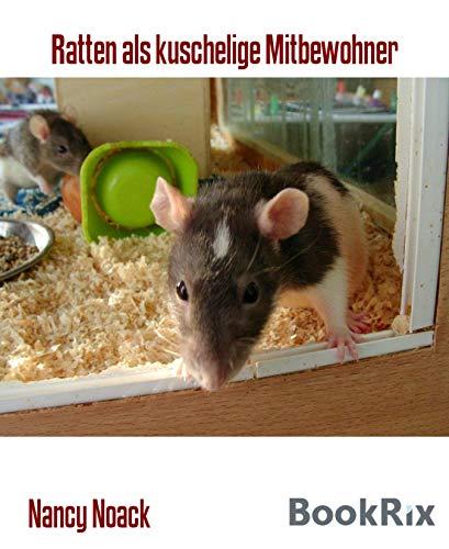 Ratten als kuschelige Mitbewohner: Infobroschüre zur Haltung von Farbratten