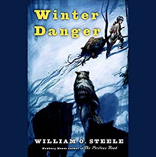 Winter Danger audiobook cover art
