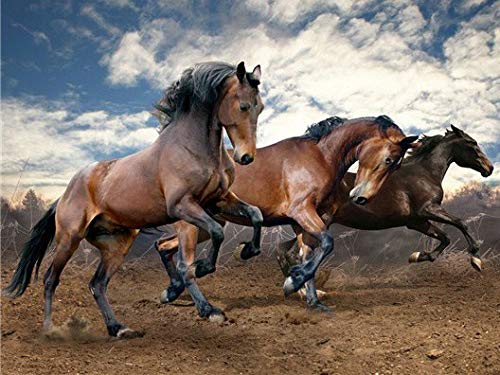 HautHome DIY 5D Caballo corriendo Diamond Painting Kit Completo Punto de Cruz Diamante Pintar con Diamantes Kits,Cuadro de Diamantes Manualidades para Decoración de Pared (30×40cm)