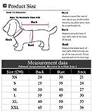 BestYuan Dogs Warm Hoodies, Vêtements pour Chiens, T-Shirt pour Chiot Animal, Manteau Vêtements Pull T-Shirt pour Chiot Animal, S-2XL