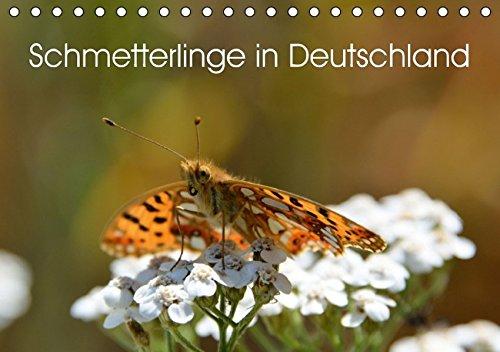 Schmetterlinge in Deutschland (Tischkalender 2016 DIN A5 quer): Genießen sie die Auswahl der schönsten Motive einheimischer Schmetterlinge aus 10000 ... als Kalender. (Monatskalender, 14 Seiten )