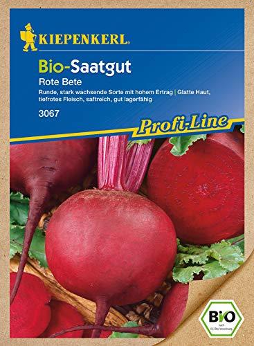 Rote Beete Detroit2/Bolivar Bio-Saatgut