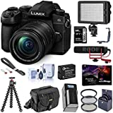 Panasonic LUMIX G95 20.3 Megapixel Mirrorless Digital Camera, 12-60mm F3.5-5.6 Lens, Bundle with RODE VideoMic GO, LED Light, Joby GorillaPod 3K, Filters, Peak Design Wrist Strap, 64GB SD Card + More
