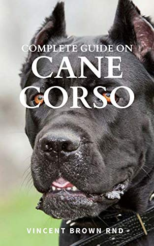 COMPLETE GUIDE ON CANE CORSO : All You Need To Know About Grooming, Training, Socializing And Taking Care Of Them