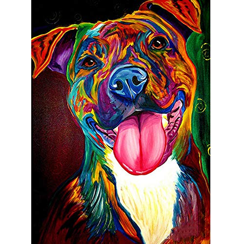 DIY 5D Diamond Painting Kits for Adults, Large Full Drill Round Diamond Embroidery Kit by Number, Home Wall Stickers Decor for Living Room by Aunkun (Colorful Dog 13.3x17.3 inch)