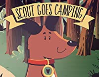 Scout Goes Camping