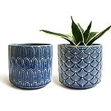 Blue Ceramic Indoor Planter
