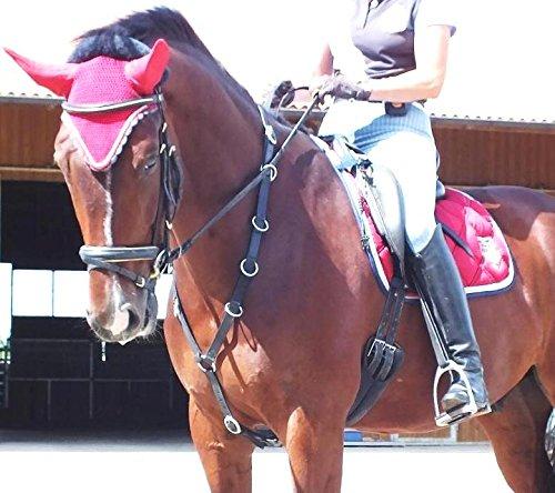 gs- Sports Martingal, REIT.- und Longierhilfe, reiten Lernen mit leichtesten Zügelhilfen (VB Vollblut)