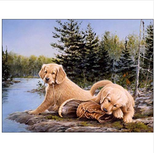 DIY Malen Nach Zahlen Decorations 2 Dogs by The River On Canvas Coloring Paint by Numbers Kit for Adult Child-Ohne Rahmen 40X50Cm